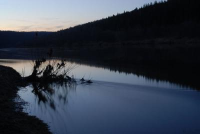 Время стирает всё река, вода, ветки, вечер