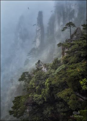 Затерянный мир... Китай Хуаншань горы пейзаж туман