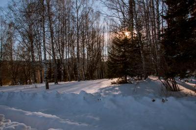 Зимний день... Зима лес снег СОЛНЦЕ