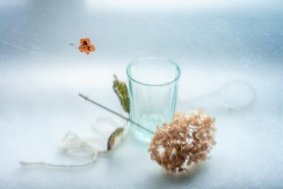 В оттенках серебра натюрморт весна гортензия веточка цветок оттенок серебра
