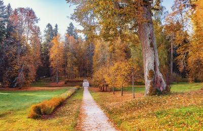 Осень в Михайловском Михайловское Пушкинские Горы осень места
