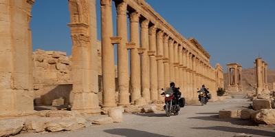 По жаре пальмира сирия БМВ BMW Palmira Syria