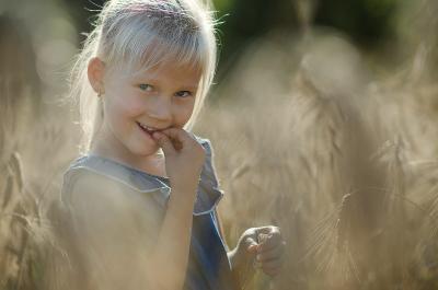 В пшенице дети природа семейная