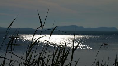 Утро над озером Белё
