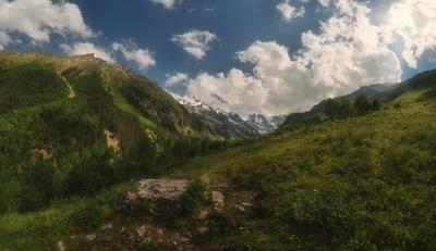 На горных лугах Шхельды приэльбрусье шхельда кавказ