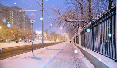 С наступившим Новым годом! МГУ