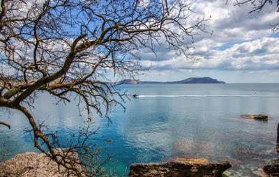 Бухта Новый Свет россия крым мыс новый свет море вода бухта волна гора май 2021 небо облака дерево камни