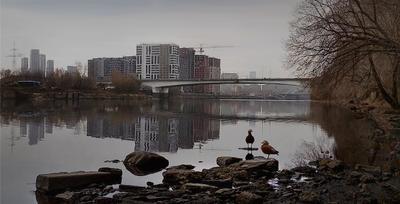 Шелепихинский мост.