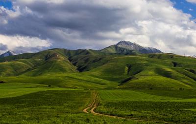 *** горы поле