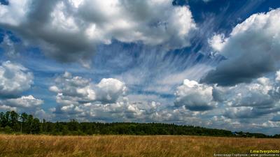 Июльский небосвод лето небо облака поле