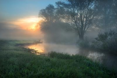 Утро на реке утро пейзаж луг туман Солоницевка