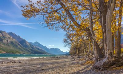 Waterton Lake Waterton Lake Alberta Autumn Осень