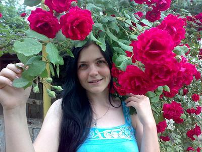 *** девушка розы