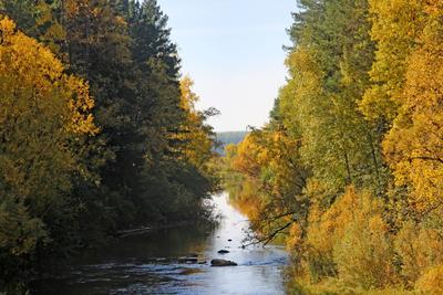 Речка осенью Сибирь Красноярский край осень природа деревья небо вода река отражение