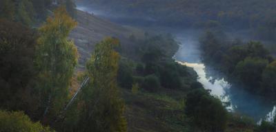 *** река туман зарайск осетр березы