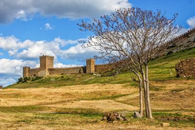 Генуэзская крепость россия крым крепость судак гора май 2021 небо облака дерево генуэзская