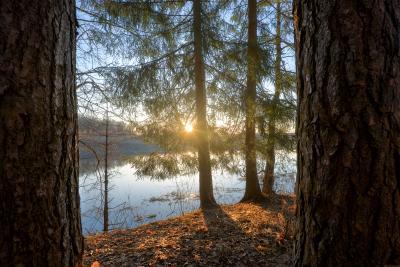 / Окно в весну / пейзаж весна подмосковье чехов красиво природа восход утро