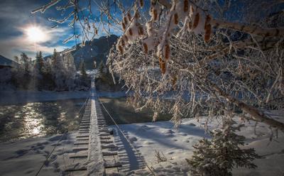 мост через р.Катунь алтай