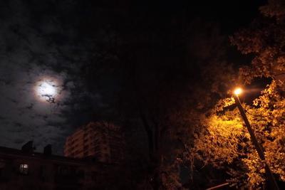 Глазастая ночь. полнолуние Краснодар улица город осень фонарь золотая