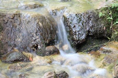 Лесной ручей лес ручей камни мох вода течение русло природа свежесть