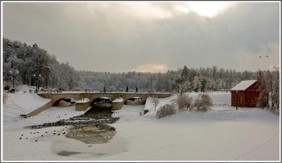 В парке Царицыно. Зимнее утро мостик утки люди