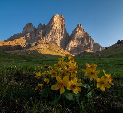 Цей-Лоам природа пейзаж горы кавказ россии дикая утро восход рассвет свет облака весна