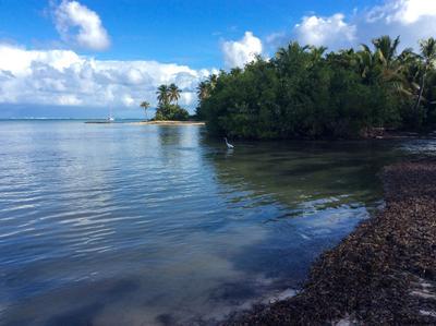 Куба Пляж океан куба