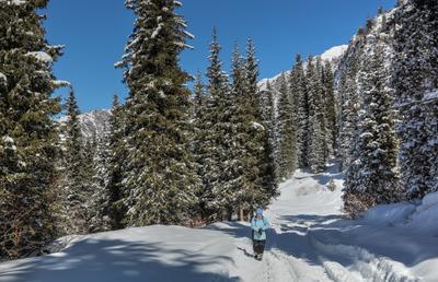 В горы... Алматы горы зима