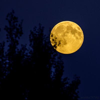 Луна луна небо ночь