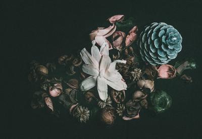 Цветочный джаз... осень натюрморт цветы
