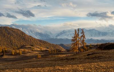 Алтайская осень пейзаж Алтай горы осень закат