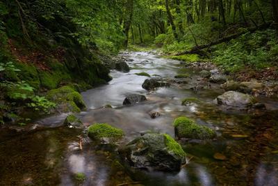 камни.. камни ключ лето орел Приморье ручей скалы тайга