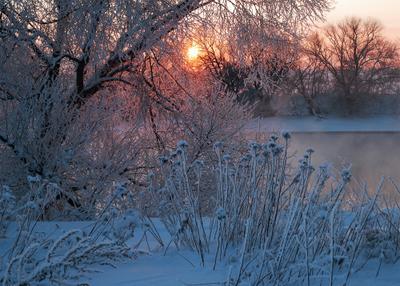 До завтра. река зима солнце