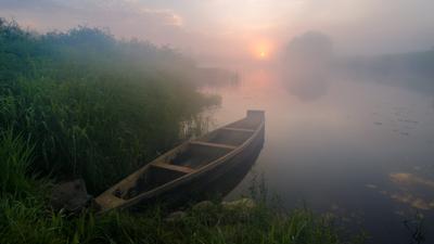 Золотой туман небо рассвет туман утро солнце лето