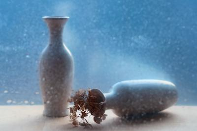 И чувств непознанных восторг! ваза стекло цветы натюрморт свет весна