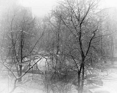 Снегопад в апреле