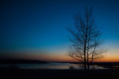 Паводок закат дерево вода