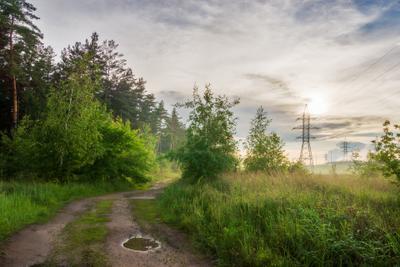Энергетика миров пейзаж природа лето вечер поляна опушка лес дорога ЛЭП облака солнце Воронеж