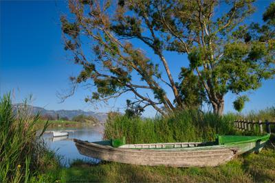 На берегу деревья небо лодка озеро рассвет