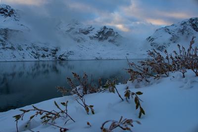 Озеро в горах озеро цветы зима горы пейзаж туман вода природа утро рассвет