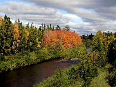 Краски осени-2. Осень краски тайга река деревья