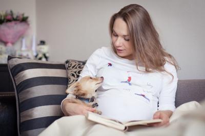 Нежность ожидания вожидании ожидание беременность девушка дети красота собака любимцы дом