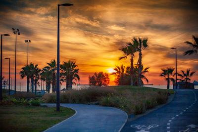 Ashkelon 7098 Photographer Alexander Tolchinskiy