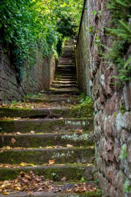 *** Лестница