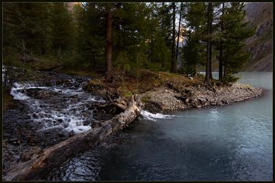 Впадение ручья в Шавлинское озеро алтай горы шавлинское