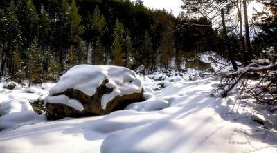 Грустно собаке зимой Зима горы река снег