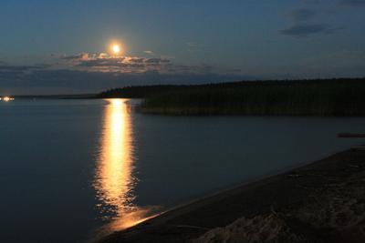 Лунная ночь была,тёплая как зола -1