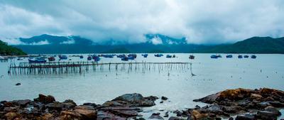 рыбное место asia travel vietnam
