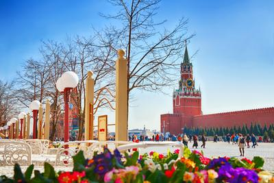 Весна на Красной Площади кремль Москва цветы Красная площадь куранты
