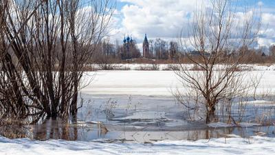 *** река Молога Устюжна пейзаж